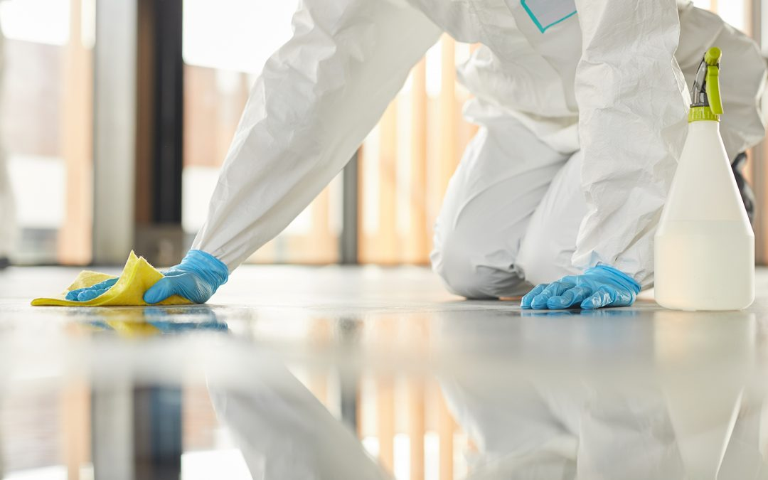 Why is Carpet Cleaning Service Important During Covid-19?